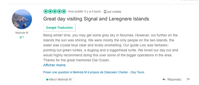 Swim with the turtle from Noumea (New-Caledonia) morning
